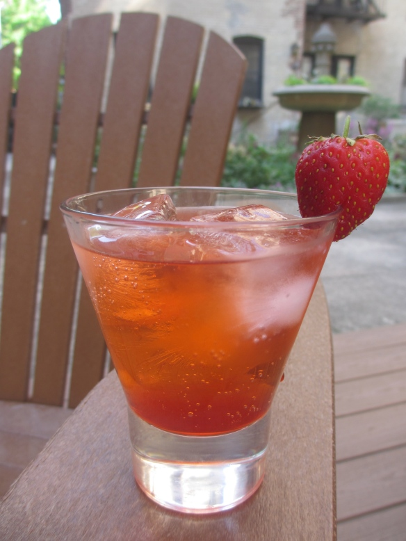 Strawberry Gin and Tonic by somethingwewhippedup.com