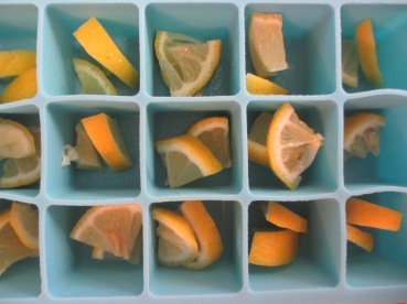 Prepping the lemon ice cubes (somethingwewhippedup.com)
